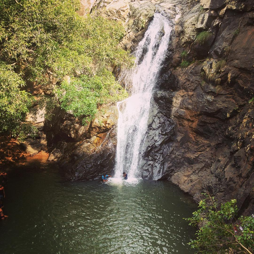 Waterfalls In Tamilnadu: The Main Attractions For Tourists