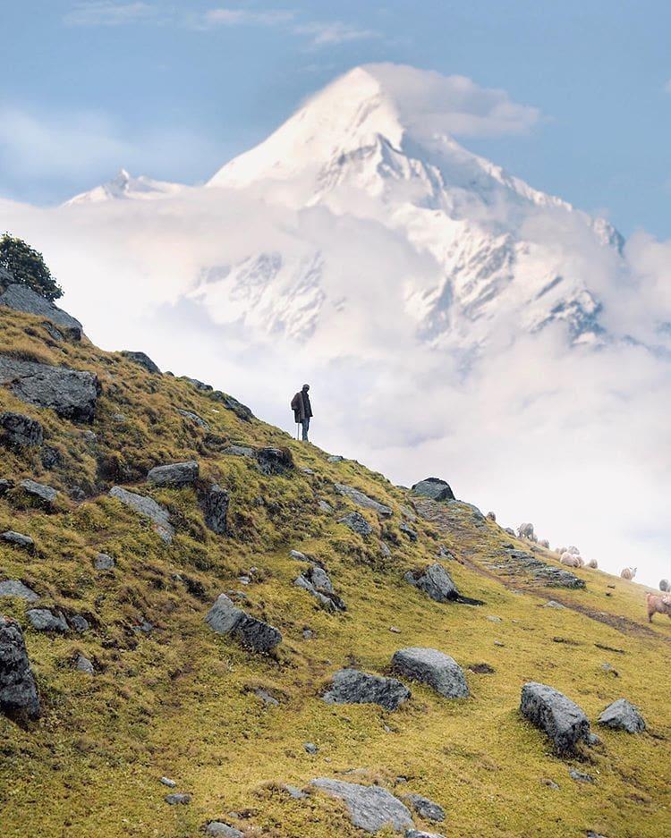 Munsiyari (541 km)