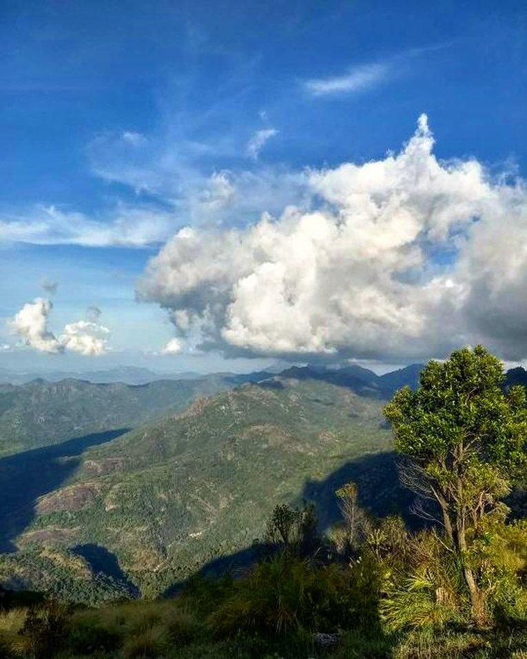 Manjolai Hills