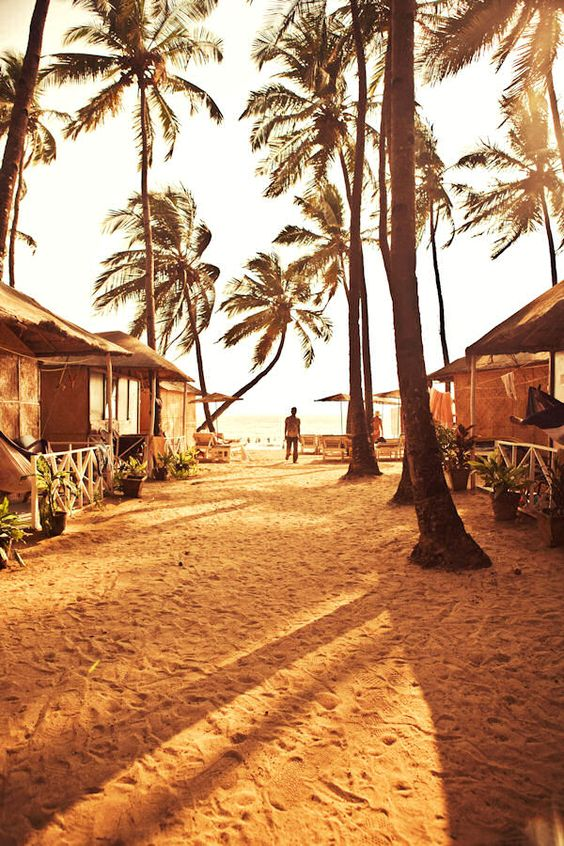 best time to visit goa