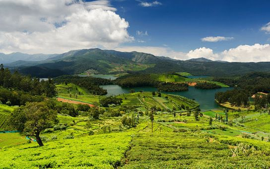 The Best time to visit Ooty