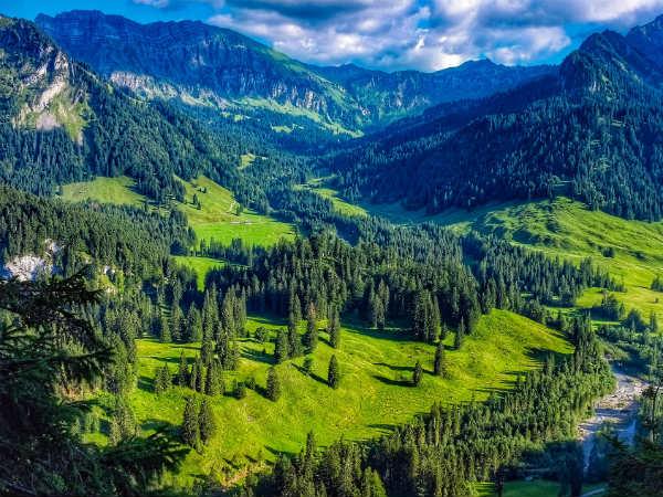 Bangus Valley