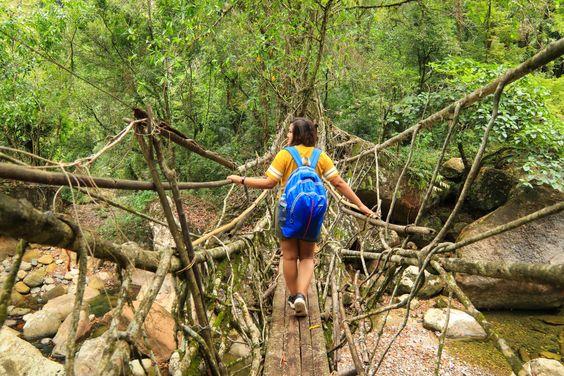 Trekking To Double-Decker Living Root Bridges